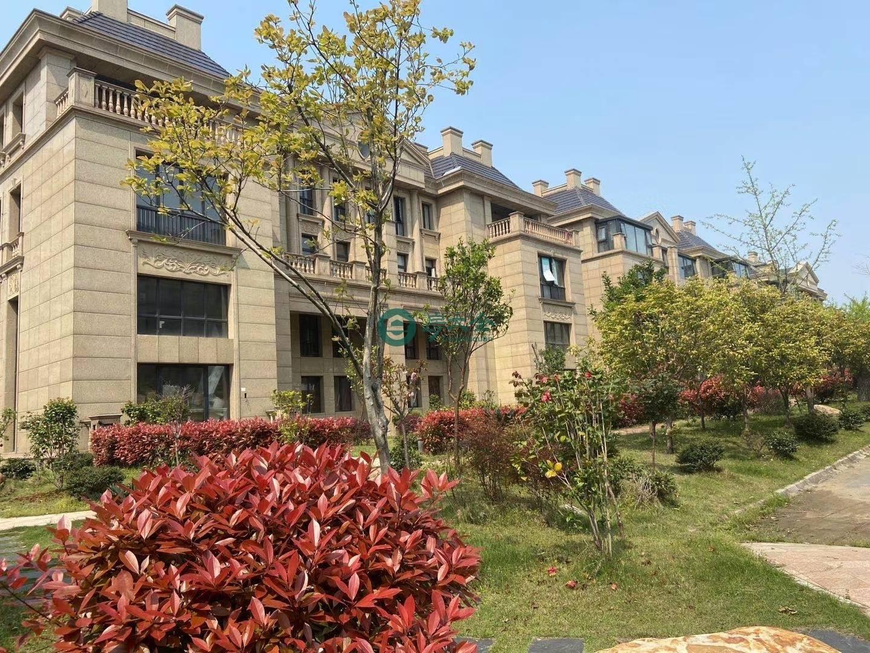 宇龙湖畔花园的实景图