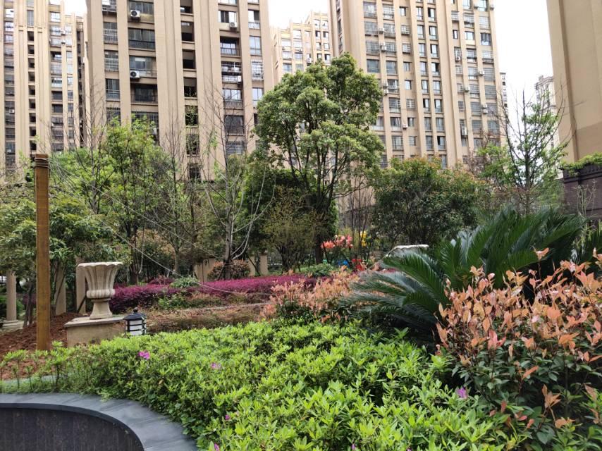 万诚中央公园 3室1厅86.35㎡