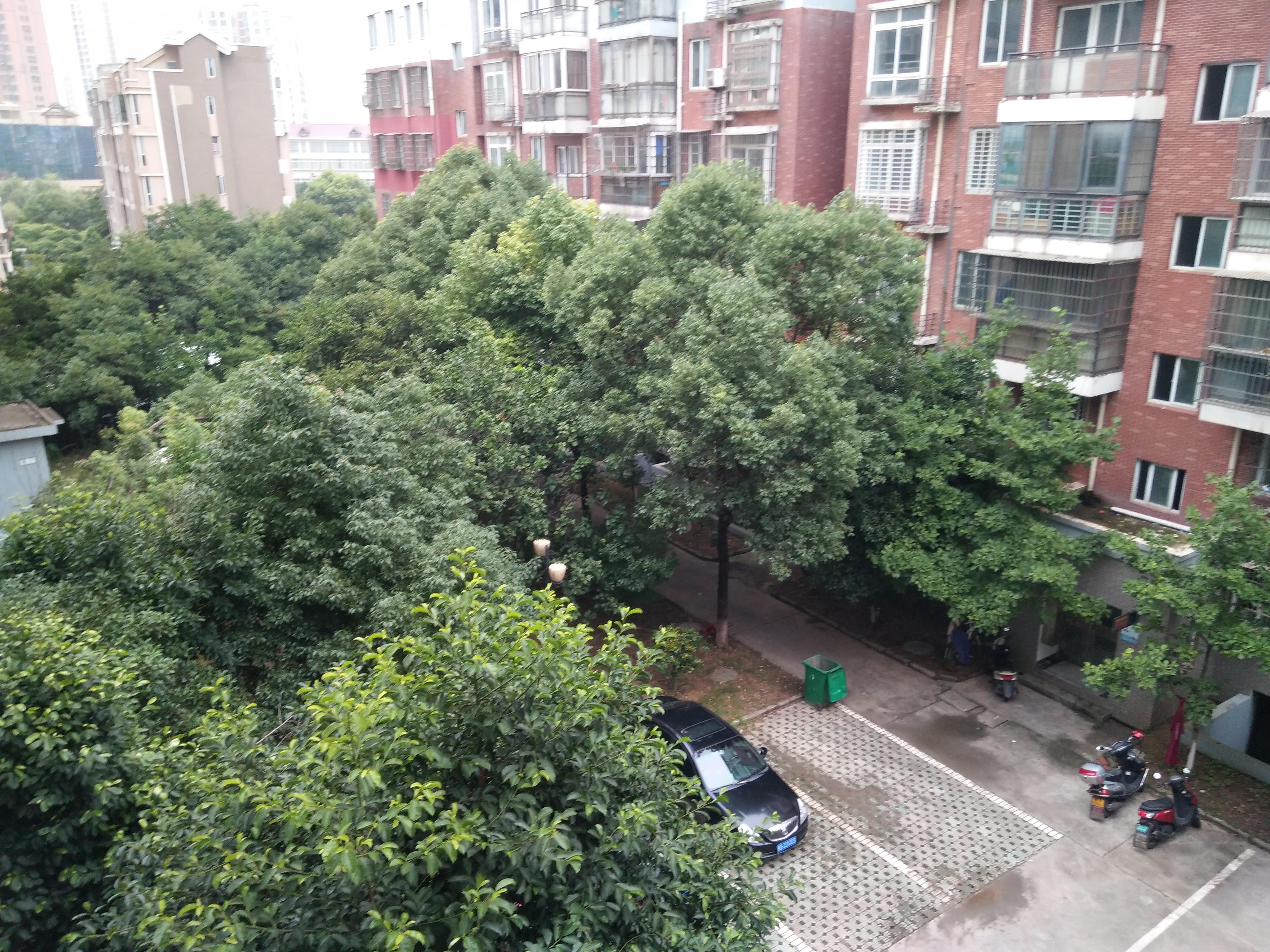 荣昌桂花园 1室2厅52㎡