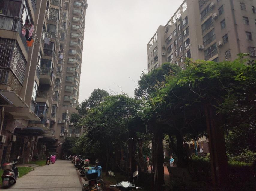 庐峰小区北区属于多层房