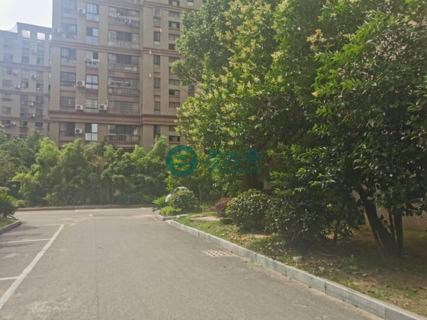 望江天悦的实景图