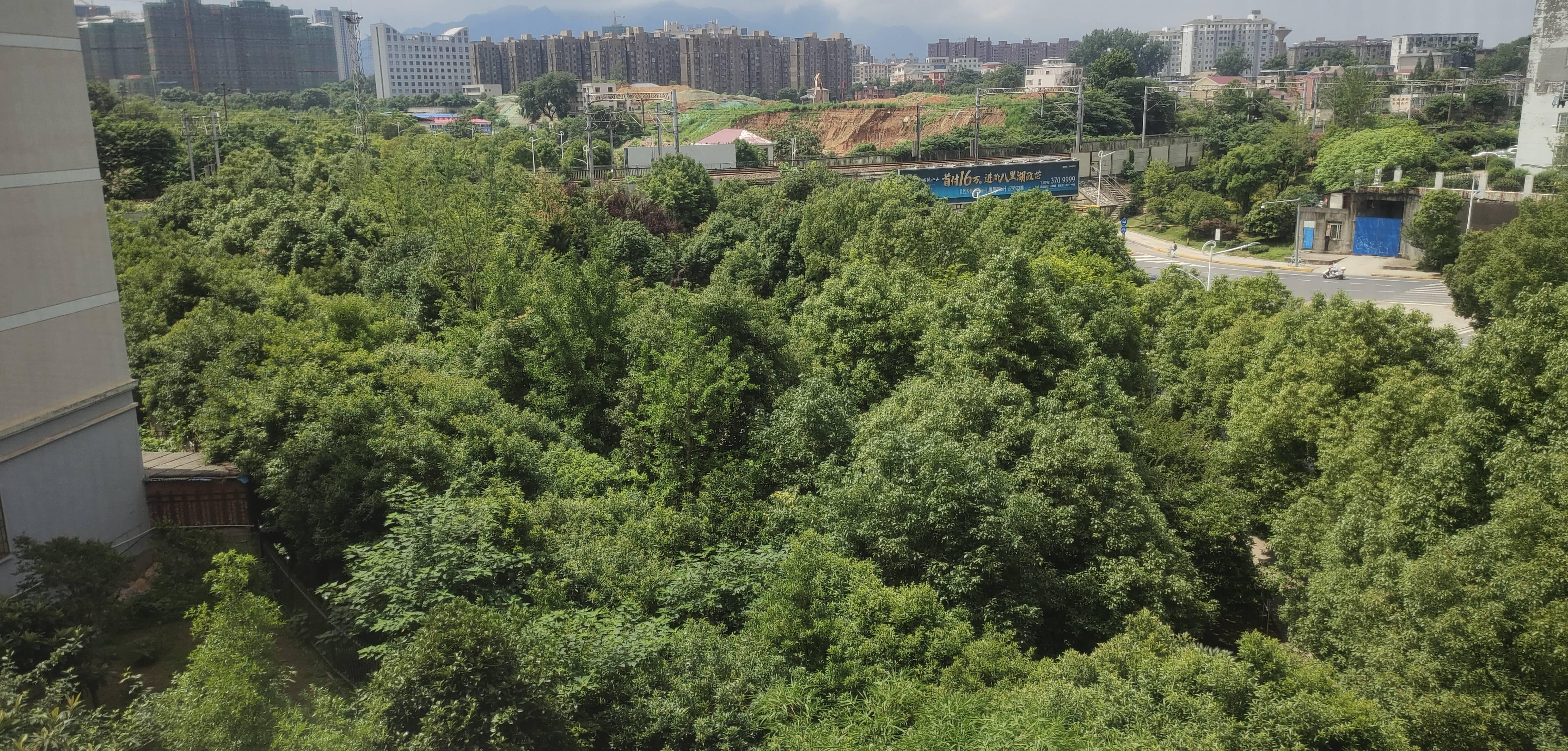 新纪元小区的实景图