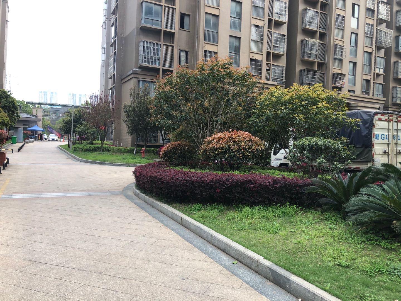锦城嘉园的实景图