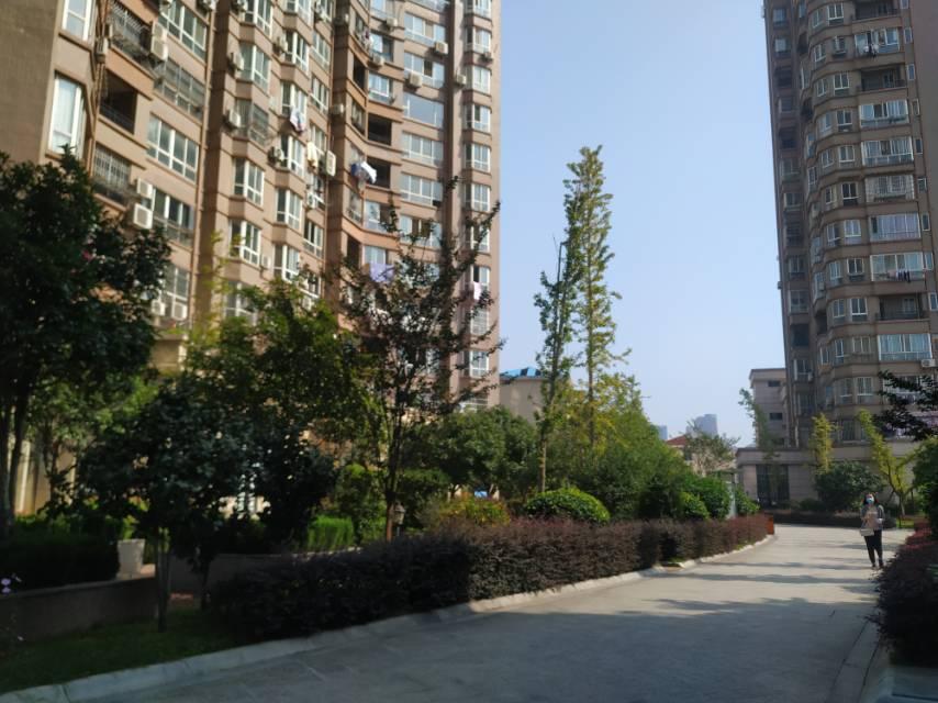 东方国际公寓,毛坯四房。